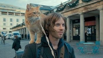 ボブという名の猫 幸せのハイタッチ8月26日.jpg