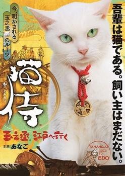 猫侍スペシャル.jpg
